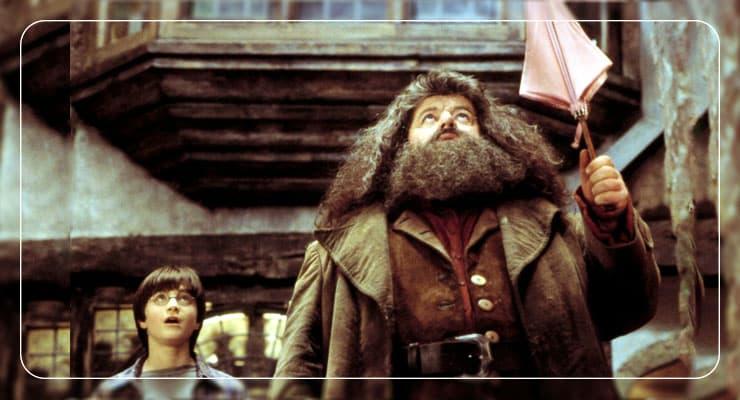 Гарри поттер и Хагрид с зонтом