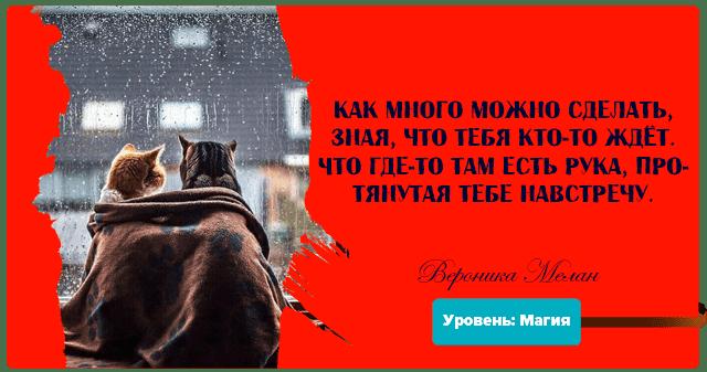 Цитата из книги «Уровень: Магия»: «Как много можно сделать, зная, что тебя кто-то ждёт»